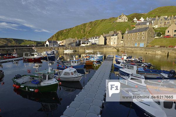Fischereihafen Fischerhafen Farbaufnahme Farbe Europa Großbritannien Gebäude klein Steilküste Küste Boot angeln Schottland