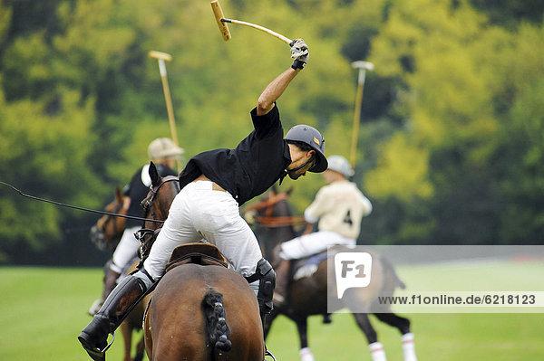 Ein Polo-Spieler im Schlag  Ebreichsdorf  Niederösterreich  Österreich  Europa