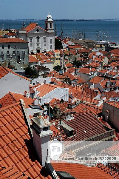 View on Alfama district from the Miradouro Santa Luzia Lisbon Portugal Europe