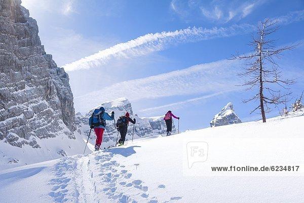 Schitourengeher am Watzmann  Berchtesgadener Alpen