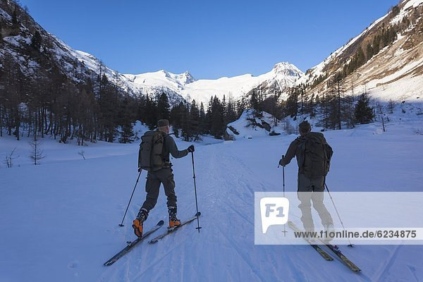 Schitourengeher in den Hohen Tauern  Tirol  Österreich