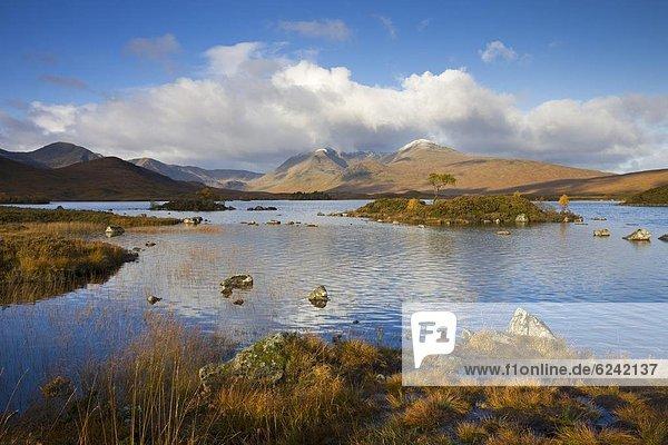 Europa  Großbritannien  Highlands  Moor  Schottland