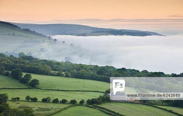 Europa Großbritannien Einsamkeit Dunst Bauernhof Hof Höfe Tal Morgendämmerung Brecon Beacons National Park Powys Hang Wales