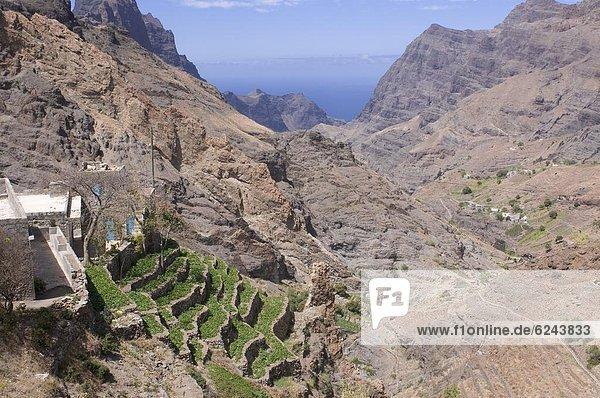 Berg Landschaft Landwirtschaft Insel Veranda Afrika