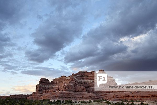 Vereinigte Staaten von Amerika  USA  Felsbrocken  Wolke  Sonnenuntergang  Anordnung  Nordamerika  rot  Canyonlands Nationalpark  Utah
