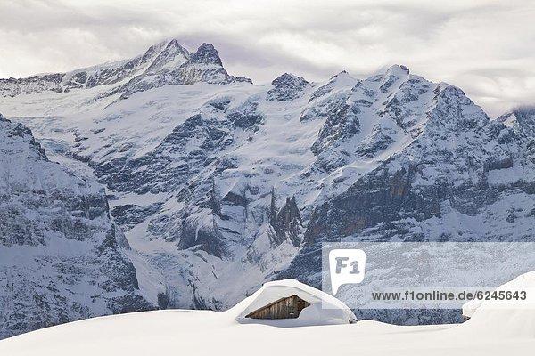Europa frontal Eiger Norden Westalpen Berner Oberland Grindelwald schwer Schnee Schweiz Schweizer Alpen