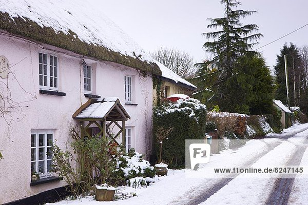 Landstraße Europa bedecken Großbritannien Dorf Devon England Schnee