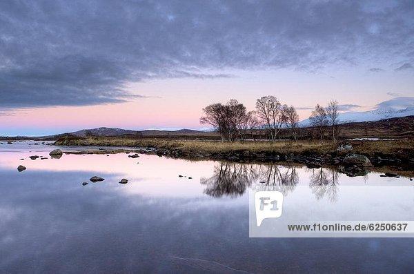 entfernt  Europa  Berg  Abend  Ruhe  Großbritannien  Himmel  über  Spiegelung  pink  Highlands  Ansicht  flach  See  bedecken  Schottland  Schnee