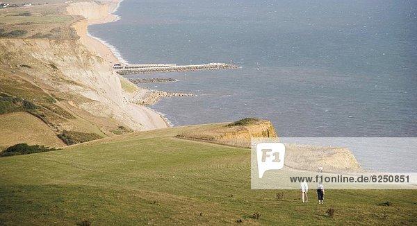 Europa  Großbritannien  Weg  Küste  Leuchtturm  UNESCO-Welterbe  Bake  Dorset  England