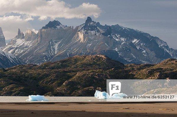 Torres del Paine Nationalpark  Chile  Patagonien  Südamerika