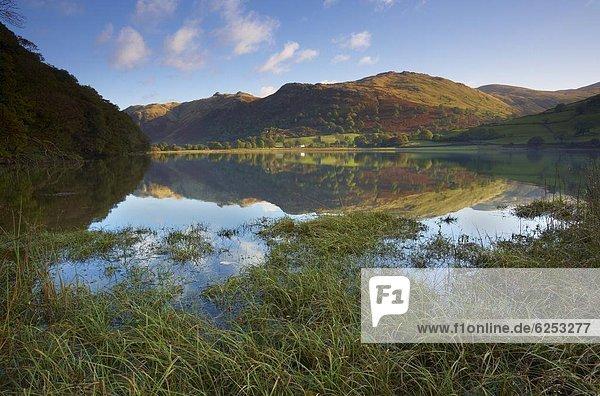Wasser  Europa  Bruder  Großbritannien  See  Herbst  Ansicht  Cumbria  Ortsteil  England