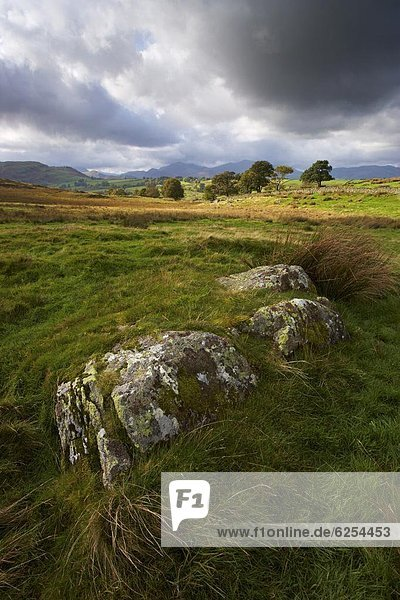 Scene near Tewet Tarn  showing the view towards Keswick  and the mountains of the Newlands Valley  Lake District National Park  Cumbria  England  United Kingdom  Europe