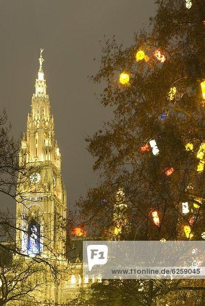 Geburtstagsgeschenk  beleuchtet  Europa  Baum  Halle  Stadt  Weihnachten  Dekoration  Österreich  Dämmerung Geburtstagsgeschenk ,beleuchtet ,Europa ,Baum ,Halle ,Stadt ,Weihnachten ,Dekoration ,Österreich ,Dämmerung