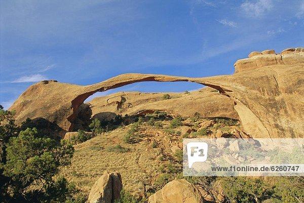 Vereinigte Staaten von Amerika  USA  Nordamerika  Arches Nationalpark  Landscape Arch  Utah