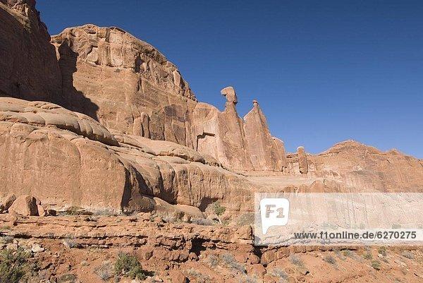 Vereinigte Staaten von Amerika  USA  Nordamerika  Arches Nationalpark  Park Avenue  Utah