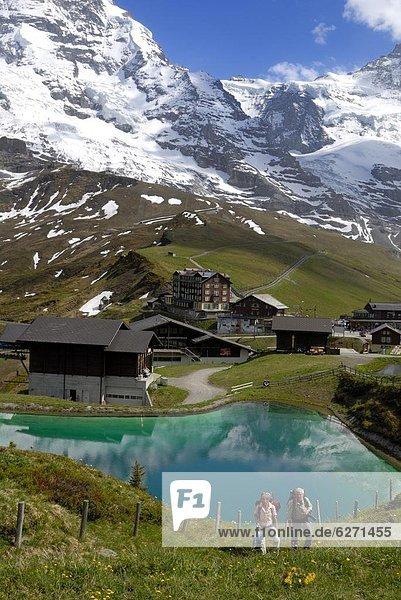 Europa  Westalpen  Berner Oberland  Schweiz