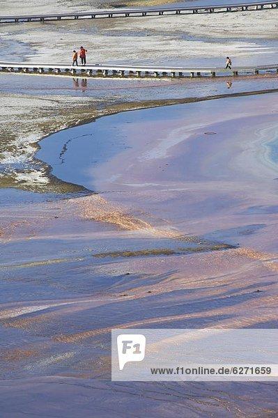 Vereinigte Staaten von Amerika  USA  über  Ehrfurcht  Tourist  Holzweg  Nordamerika  UNESCO-Welterbe  bunt  fließen  Mineral  Wyoming