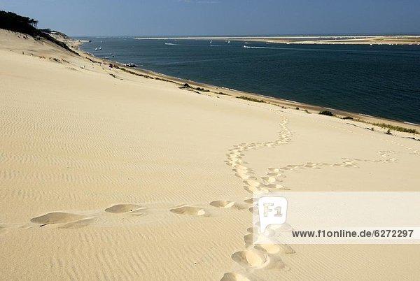 Frankreich  Europa  Sand  Fußabdruck  Düne  Aquitanien  Gironde