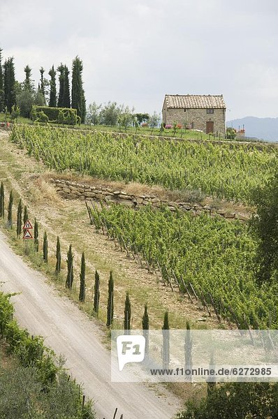 Europa Landschaft Ansicht typisch Toskana Italien