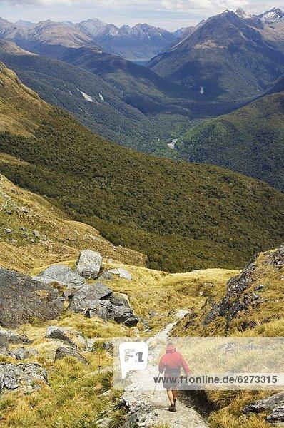 kegelförmig  Kegel  Spur  führen  folgen  Hügel  wandern  Pazifischer Ozean  Pazifik  Stiller Ozean  Großer Ozean  neuseeländische Südinsel  Neuseeland