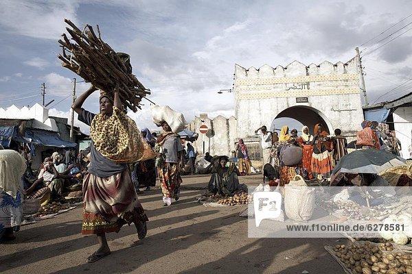 Der Markt am Eingang der Shoa-Tor  eines der sechs Tore in die ummauerte Stadt Harar  Äthiopien  Afrika