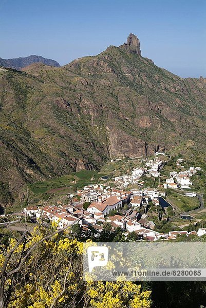 Europa  Kanaren  Kanarische Inseln  Gran Canaria  Spanien