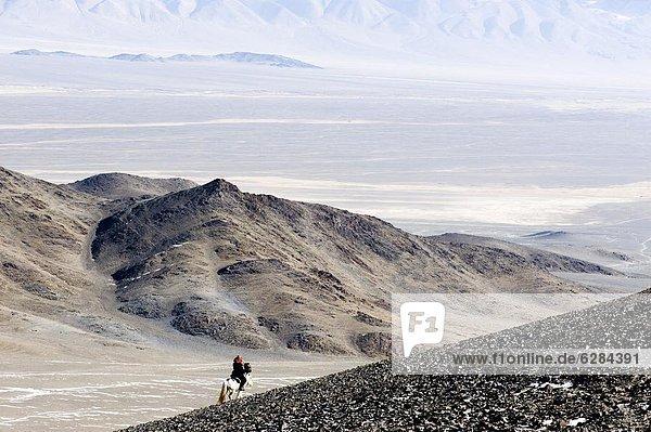 Berg  Morgen  Jagd  Asien  Adler  Mongolei