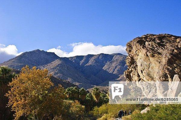 Vereinigte Staaten von Amerika  USA  Nordamerika  Kalifornien  Palm Springs