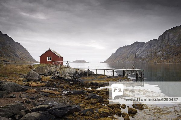 Hütte  Europa  Norwegen  Steg  Fjord  Skandinavien