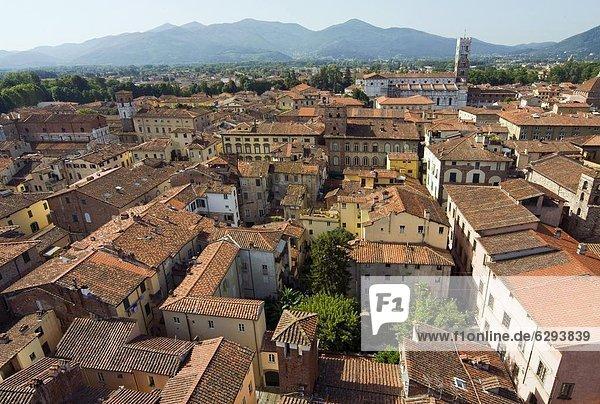 Europa  Ansicht  Italien  Lucca  Toskana