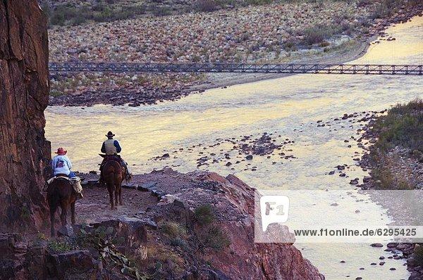 Vereinigte Staaten von Amerika USA nehmen folgen Tourist Fluss Maultier Nordamerika Arizona Grand Canyon vorwärts Colorado