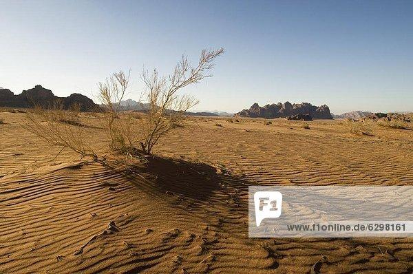 Desert  Wadi Rum  Jordan  Middle East