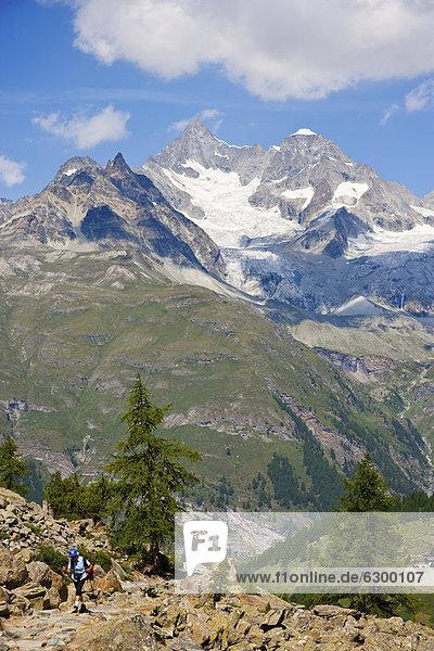 Alpen rund um das Matterhorn  Schweiz  Europa