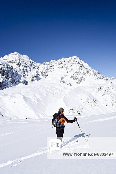 Skitourengeher beim Aufstieg zur hinteren Schöntaufspitze  Sulden  hinten der Ortler und Zebru  Südtirol  Italien  Europa Skitourengeher beim Aufstieg zur hinteren Schöntaufspitze, Sulden, hinten der Ortler und Zebru, Südtirol, Italien, Europa