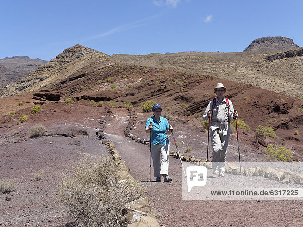 Hikers  Sendero Quise trail  Calvario mountain at the back  AlajerÛ  La Gomera  Canary Islands  Spain  Europe