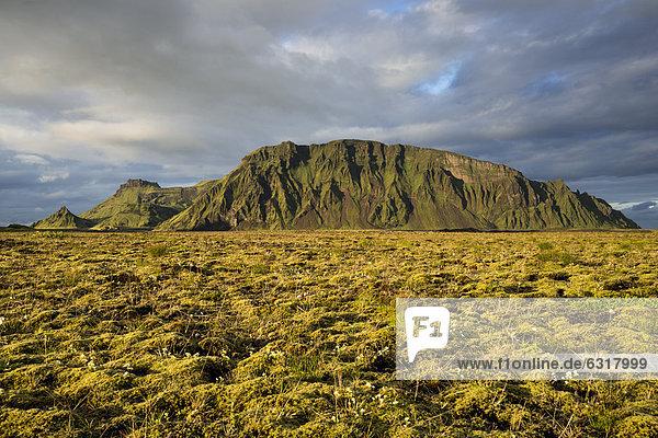 Mit Moos bewachsener Berg Hafursey  Südküste  Island  Europa