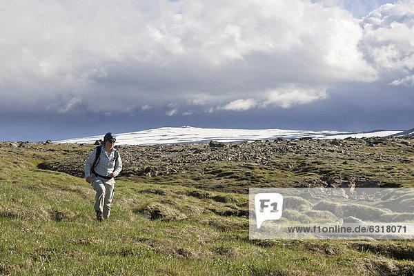 Frau wandert durch Wiese  hinten der Gletscher Ok  H_safell  Island  Europa