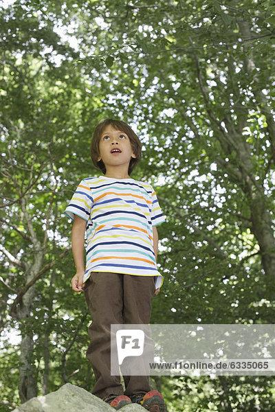 Boy standing on rock in woods