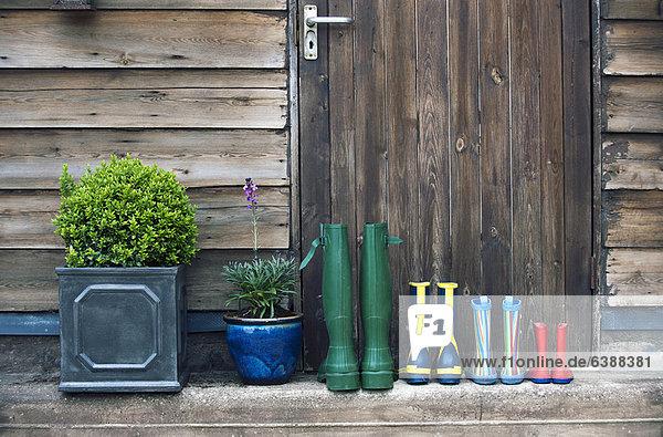 Regenstiefel und Pflanzen auf der Veranda