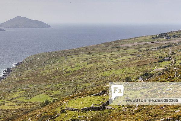 Küstenlandschaft am Ring of Kerry  County Kerry  Irland  Europa