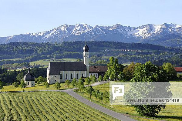 Wallfahrtskirche St. Marinus und Anian in Wilparting  Gemeinde Irschenberg  Mangfallgebirge  Oberland  Oberbayern  Bayern  Deutschland  Europa  ÖffentlicherGrund