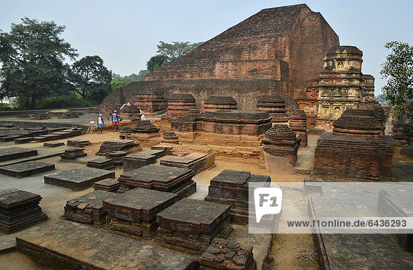 Archaeological site and an important Buddhist pilgrimage destination  the ruins of the ancient University of Nalanda  Ragir  Bihar  India  Asia