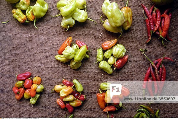Chillies for sale in the fruit and veg market  Stone Town  Zanzibar  Tanzania.