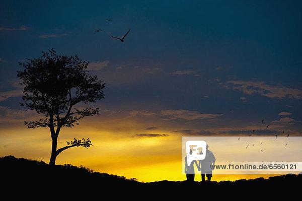 Verliebtes Paar in romantischer Landschaft