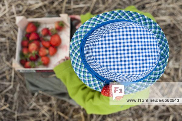 Junge mit blauem Hut und einer Schachtel Erdbeeren