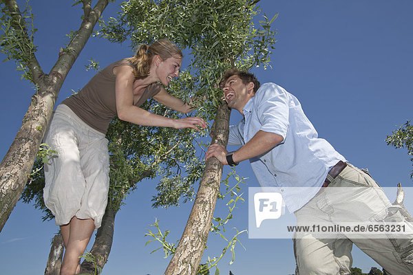 Germany  North Rhine Westphalia  Duesseldorf  Couple playing on top of tree  smiling