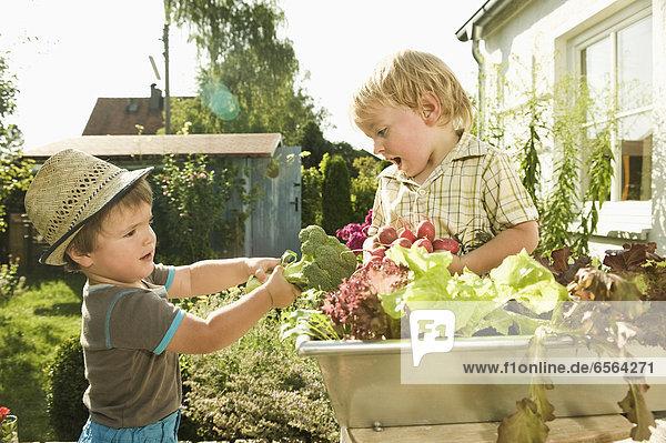 Jungen  die Brokkoli halten.