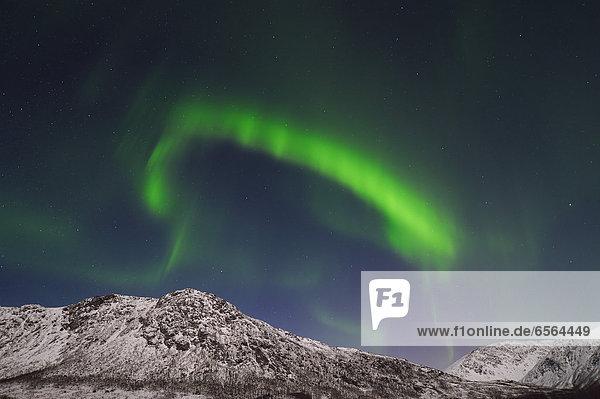 Norway  Troms  View of Aurora Borealis near Tromso