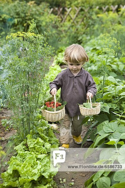 Feature  children gardenning