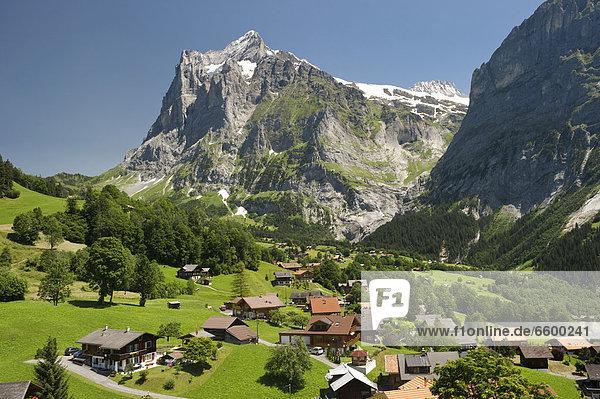 Europa Berner Oberland Grindelwald Schweiz Kanton Bern